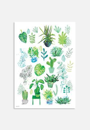 Sweet William All My Plants Art