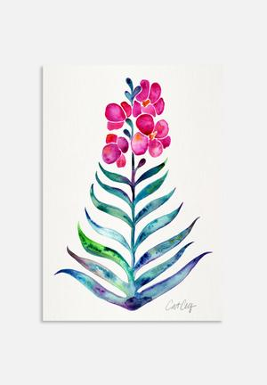 Cat Coquillette Blooming Orchid Art