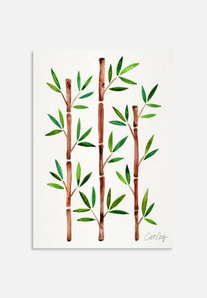 Cat Coquillette Bamboo Art